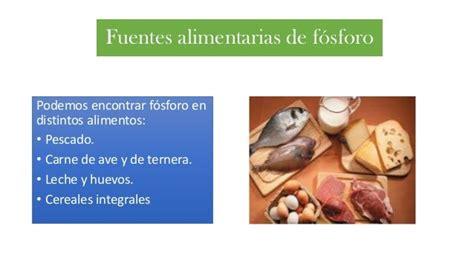 alimentos fosforo dietas y alimentos bajos en f 243 sforo en el perro enfermo renal