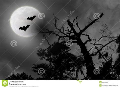 spooky cloud has locals fearing spooky sky cloudy moon bats stock photo image