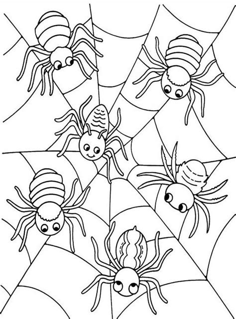 six cute spider on spider web coloring page netart