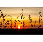 Sunset Wallpapers Nature Scenery  HD Desktop