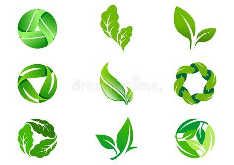 S Basil Leaves Daun Basil 20 G green leaf vector logo design and icon stock illustration