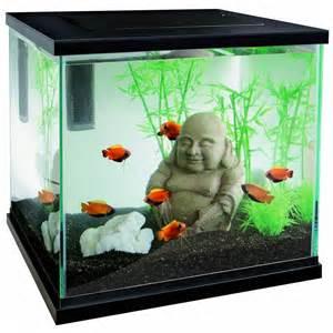 aquarium poisson zen 30 superfish 233 clairage int 233 gr 233