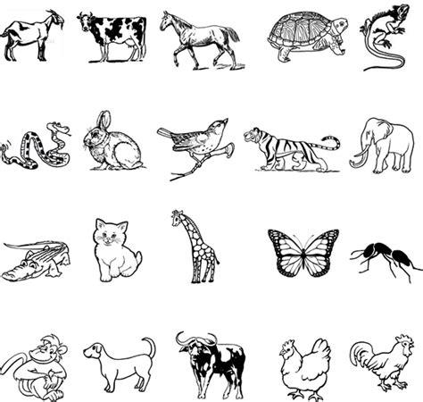modul bahasa inggris tentang animal bahasa