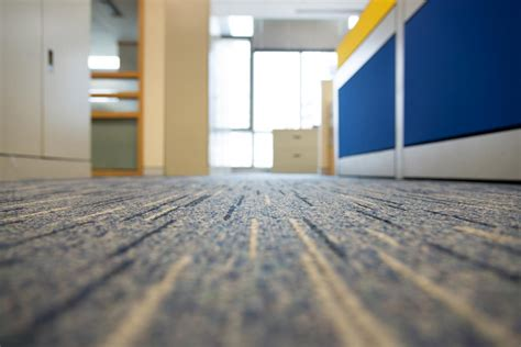 Carpet Cleaning Kitchener Waterloo by Carpet Duct Cleaning Frequently Asked Questions Aaa Steam Carpet Cleaning
