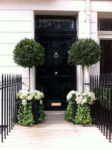 Front Door Topiary by Best 25 Topiary Trees Ideas On Topiaries