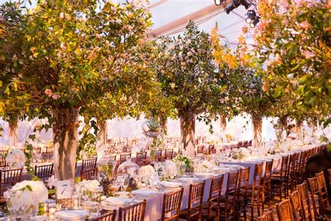 reception decor  indoor garden wedding decor