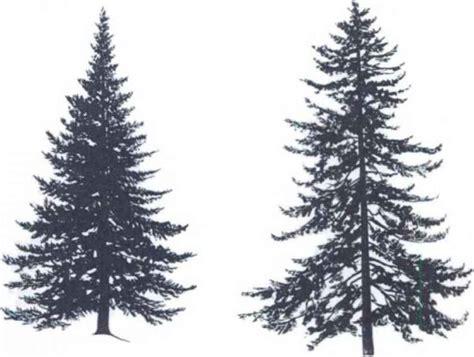tree silhouette tattoo pine trees silhouette tattoos pine tree