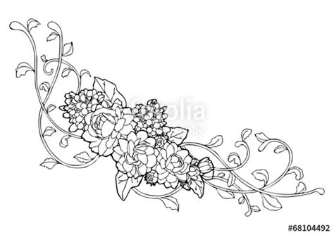 quot jasmine flower and vine line drawing vector quot stock image