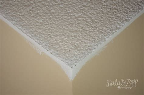 best paint for popcorn ceiling my big project for 2013 how to paint a popcorn ceiling