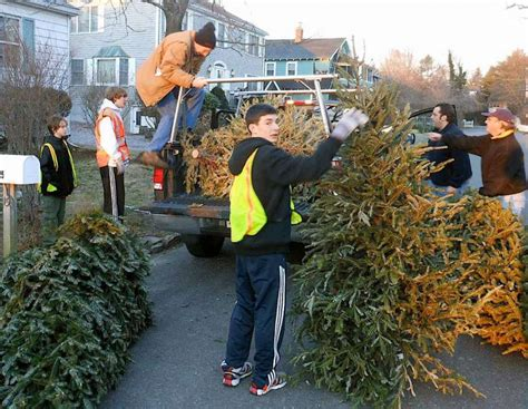 westport scouts tackle townwide collection of christmas