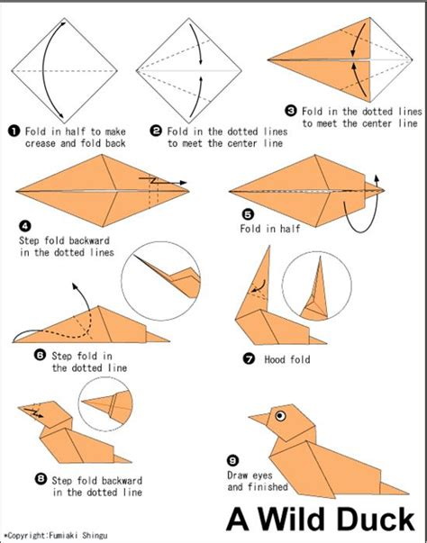 Easy Money Origami Animals - 29 best images about origami on pill boxes