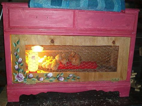 backyard brooder box now that s a chick brooder brooder box ideas