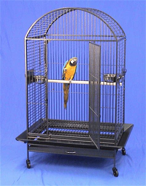 large bird cages large bird cages bird cages for large birds bird cages for macaws and cockatoos for sale