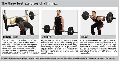 squats deadlifts and bench press 健身筆記 以自身體重 為基本的目標吧