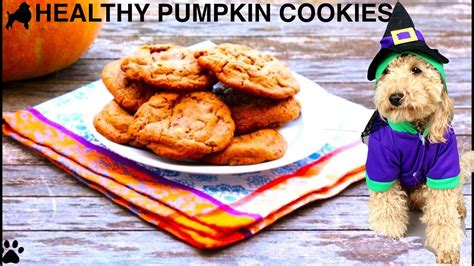 healthy snacks for dogs healthy pumpkin cookies treats remix diy food by cooking for dogs