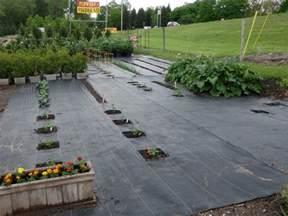 Landscape Weed Barrier by Vegetable Garden Knecht S Nurseries Amp Landscaping