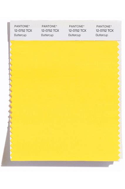 buttercup color 54 best images about color on design color
