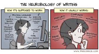 phd comics the neurobiology of writing