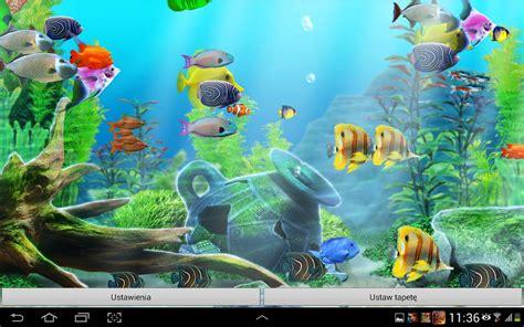 www fish live wallpaper 48 trend live fish aquarium wallpaper vn i130507
