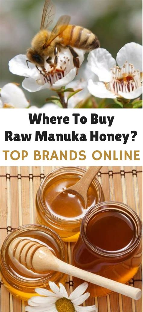 best brand of manuka honey where to buy manuka honey best manuka honey umf jarrah