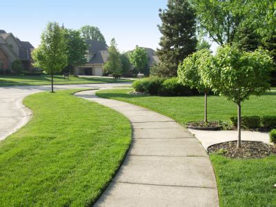 summer lawn care tips tips on summer lawn care