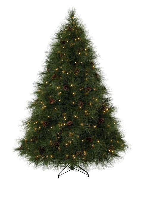 ponderosa needle pine christmas trees christmas tree market