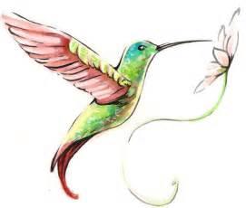 dessin de colibri cars