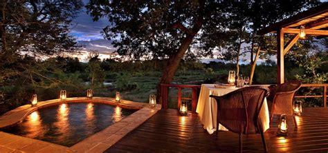sull albero hotel 5 meravigliose sull albero dove dormire in sudafrica