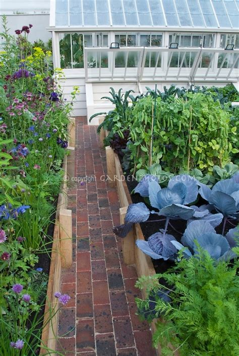 coldframe in raised bed vegetable garden with path