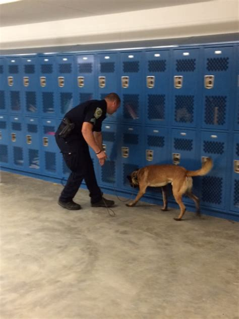 puppy finder nh and k9 search pelham high school londonderry news