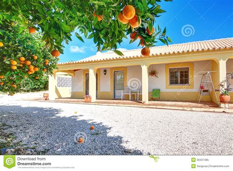 summer house orange a typical house for the summer vacation with orange garden