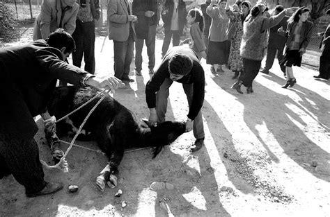 hochzeit yeziden being yezidi by onnik krikorian neweasternpolitics