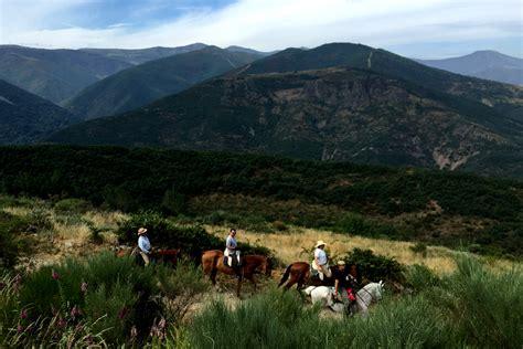 camino de santiago trail camino de santiago spain holidays
