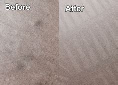 cleaning services arlington