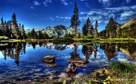 imagenes bonitas bosque de fantasias 有水的风景图片