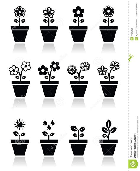 Pot Sepeda 6 By Sun Florist flower plant in pot icons set royalty free stock photo