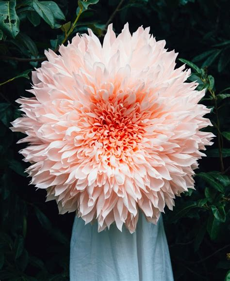 Big Paper Flowers - petal to petal paper flowers by tiffanie turner