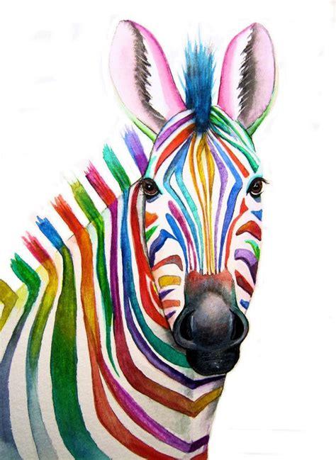 colorful zebra print best 25 zebra ideas on
