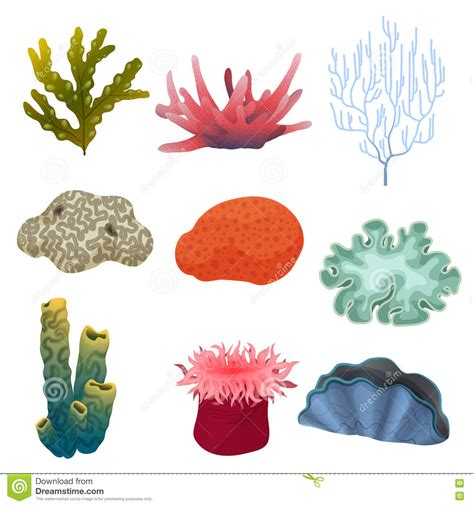 set of two vibrant red coral reef look figurines beach red sea coral fish set stock photography cartoondealer