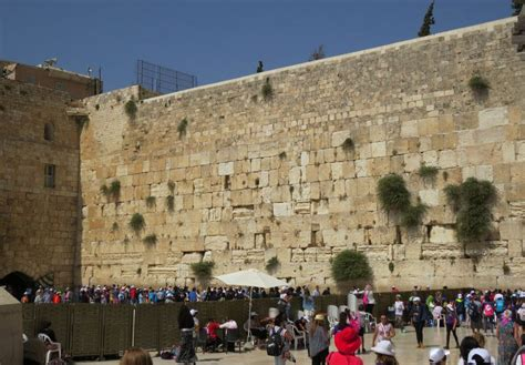 best day tours the best israel day tours israel travel secrets