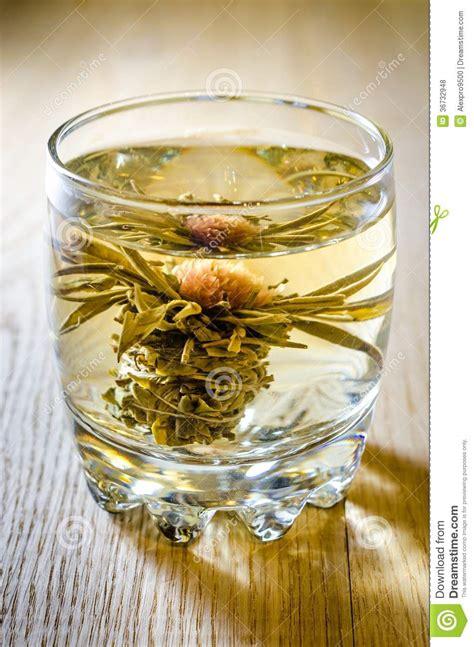 blue lotus flower tea lotus flower tea royalty free stock photos image 36732948