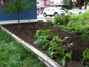 triyae com backyard vegetable garden design ideas