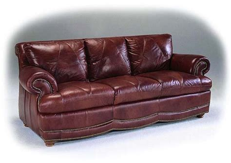 lether couch protect your leather sofa from your dog or cat cls