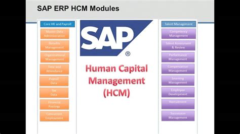 tutorial sap hr module spinifexit the 2013 guide to sap hr payroll reporting