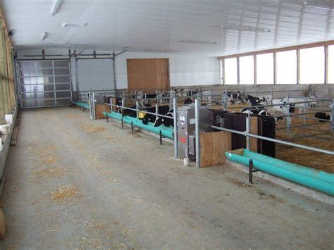 automatic feeders automatic calf feeders calfcare ca