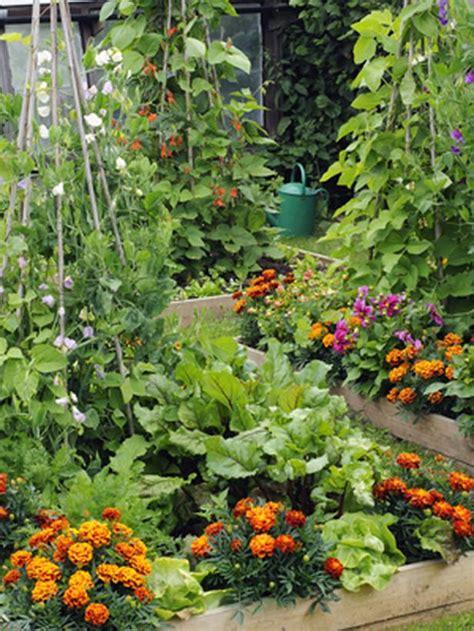 Gardening Tips For Beginners Ornamental Vegetable Gardens Vegetable Garden Advice