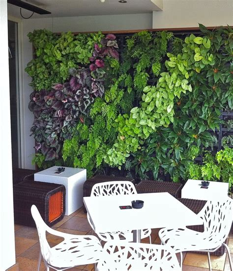 vertical garden wall kit vertical gardens sydney green walls growing well