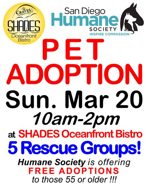 adoption events san diego pet adoption at shades san diego ca news