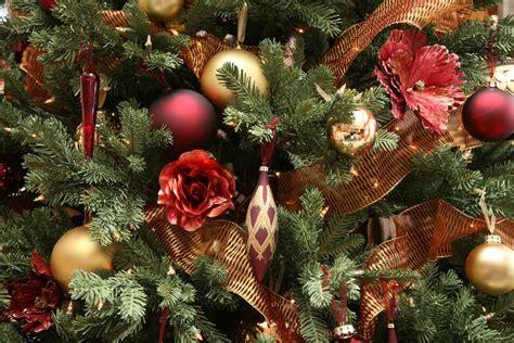 nice christmas trees 1920x1280 nice christmas tree desktop pc and mac wallpaper