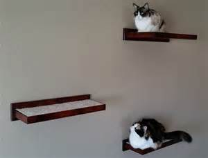 cat wall shelves climbing cat climbing shelves and perches for walls